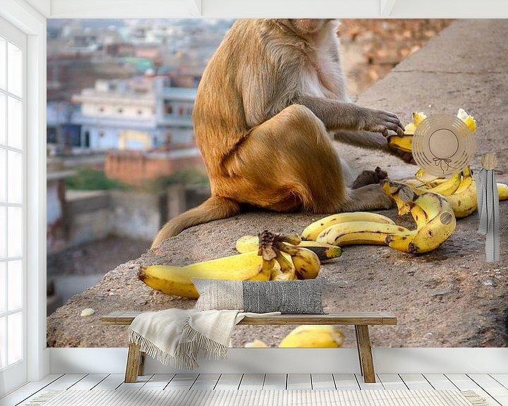 Beispiel fototapete: Affe beim Mittagessen von Juul van Wandelen
