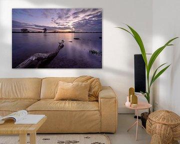 Blik op de IJssel van Michel Knikker