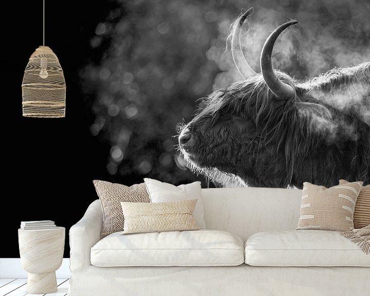 Sfeerimpressie behang: Schotse Hooglander in de vrieskou op Texel. van Justin Sinner Pictures ( Fotograaf op Texel)