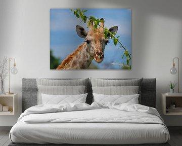 Porträt einer Giraffe von Eye to Eye Xperience By Mris & Fred