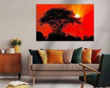 Sonnenaufgang in Afrika, Uganda von W. Woyke