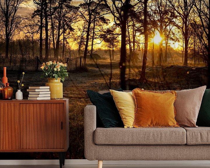 Sfeerimpressie behang: De stralen van het ochtendlicht door de bomen heen van Studio de Waay