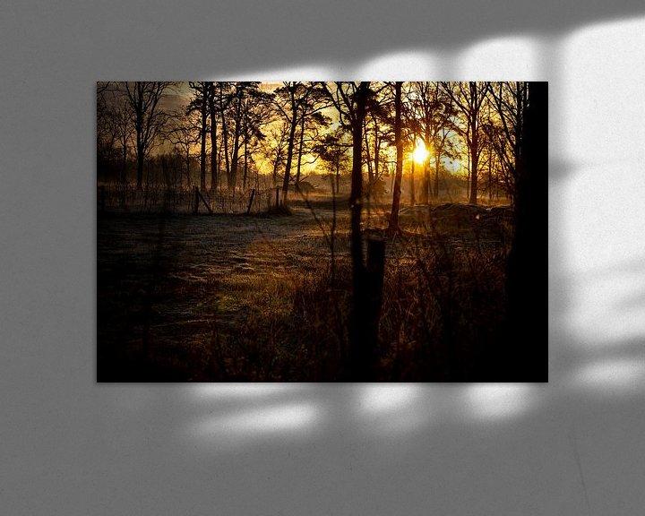 Sfeerimpressie: De stralen van het ochtendlicht door de bomen heen van Studio de Waay