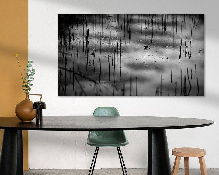 Sfeerimpressie: riet in water, reflecties van de lucht kleuren het plaatje in van Studio de Waay