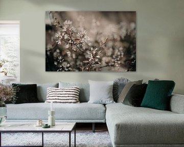 Blumendetail von Sanne van Pinxten