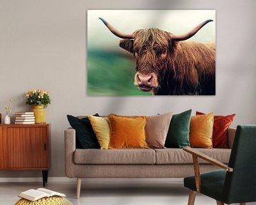 Rossig Schottische Highlander-Kuh mit nebligem Hintergrund