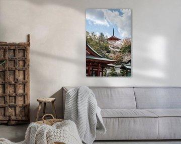 Pagode en tempels met kersenbloesems van Mickéle Godderis
