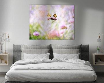 Zwei Schmetterlinge auf einer Blume von Thijs van Beusekom