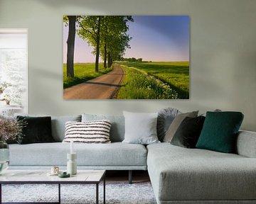 Gronings landschap nabij Appingedam, Groningen, Nederland van Henk Meijer Photography