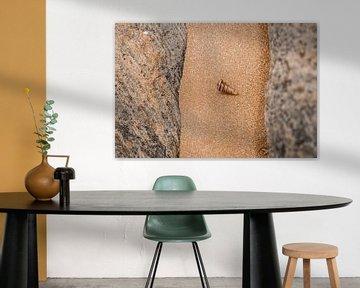 Mossel van Fotoverliebt - Julia Schiffers