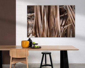 Palmier sur Fotoverliebt - Julia Schiffers