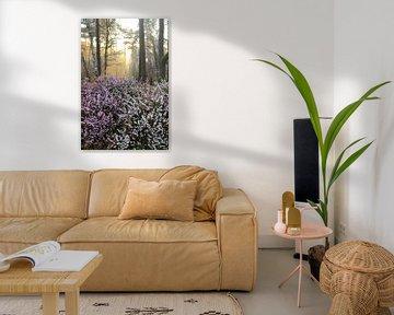 Blühende Heide im Wald von Bobsphotography