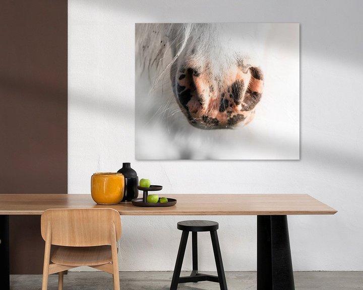 Sfeerimpressie: Pony van Jeroen Mikkers
