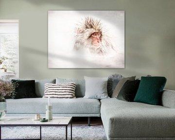 Sneeuwaap van Lilian Heijmans