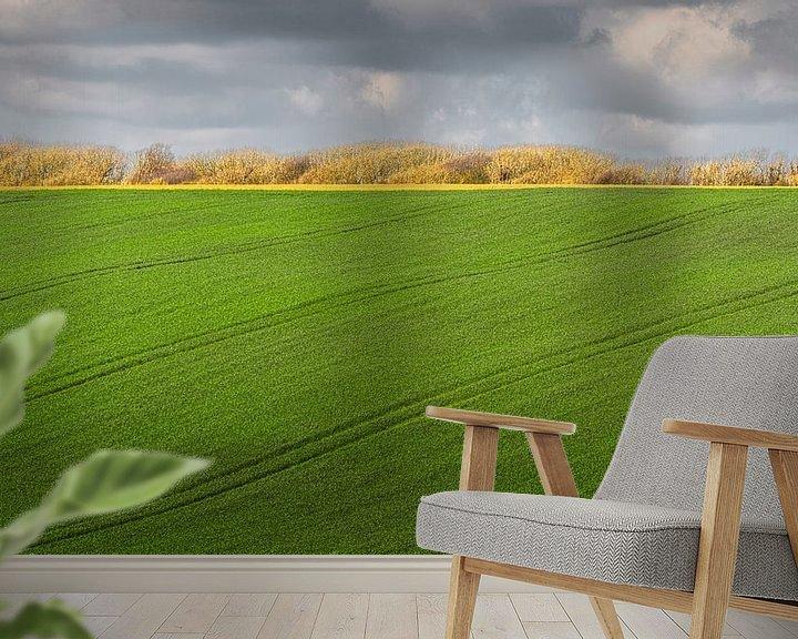 Beispiel fototapete: 0514 Sprung von Adrien Hendrickx