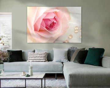 Sweet pink von LHJB Photography