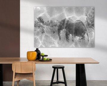 Afrikanischer Elefant in der Wildnis von Bobsphotography
