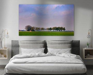 Landschap in de provincie Groningen, Nederland van Henk Meijer Photography