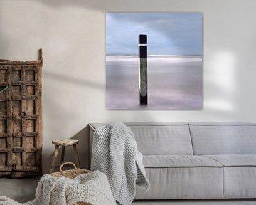 Strandpaal abstract van Hans Kwaspen