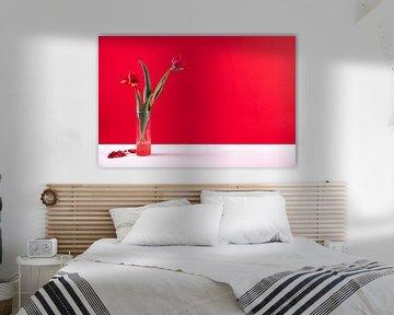 moderne stilleven rood