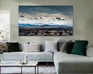Mojave woestijn -1 van Keesnan Dogger Fotografie