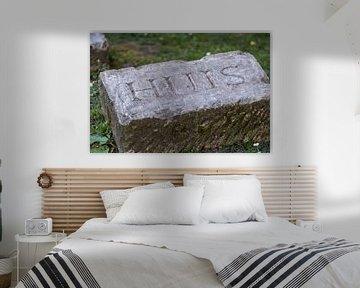 Stein mit Haus von Foto's uit Groningen