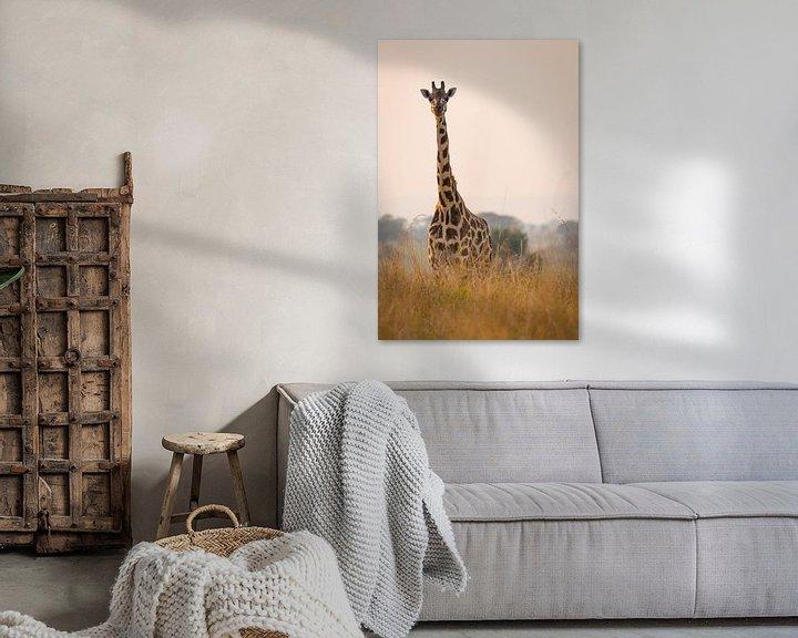 Sfeerimpressie: Giraffe langs de Nijl van Dennis Van Den Elzen