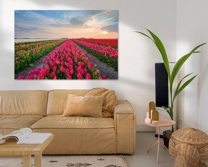 Beispiel: Tulpen aus Holland von Richard Gilissen