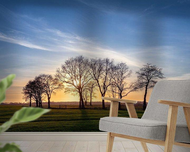 Sfeerimpressie behang: Zonsondergang Leekstermeergebied in De Onlanden van R Smallenbroek