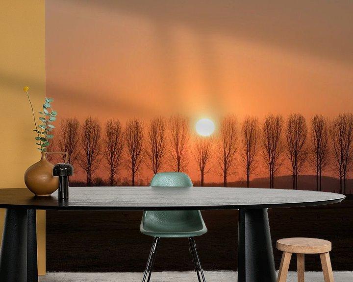 Beispiel fototapete: Baumreihe von Moetwil en van Dijk - Fotografie