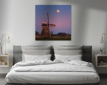 Zonsondergang en volle maan bij Hoeksmeer, Garrelsweer, Groningen, Nederland