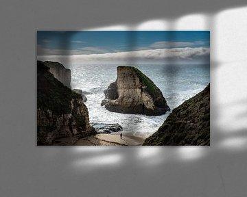 Shark Fin Cove - Davenport van Keesnan Dogger Fotografie