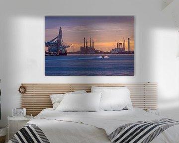Sonnenuntergang Maasvlakte