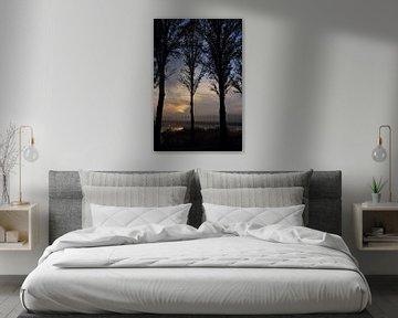 Vroeg in de ochtend donkere zonsopkomst met bomen van Bobsphotography