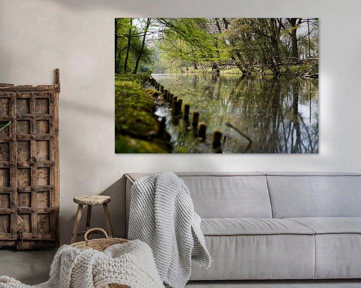 Sfeerimpressie: Bomen bij het water van David Muntinga