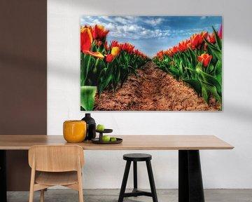 Tulpen von Claudia De Vries