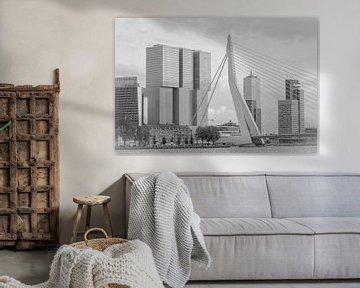 De Erasmusbrug en de Rotterdammer in zwart-wit van Lizanne van Spanje