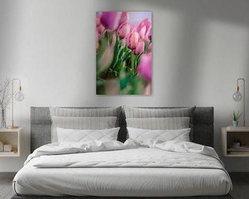 Rosa Tulpen von Sebastiaan van Stam Fotografie