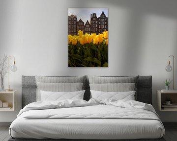 Tulpen aus Amsterdam von Thea.Photo