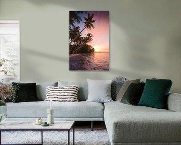 Îles Mentawaï
