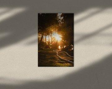 Coucher de soleil Mentawai sur Andy Troy