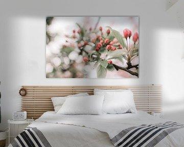 Zweig mit rosa Blüte von Dennis  Georgiev