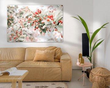 Zweig mit roter und rosa Blüte von Dennis  Georgiev