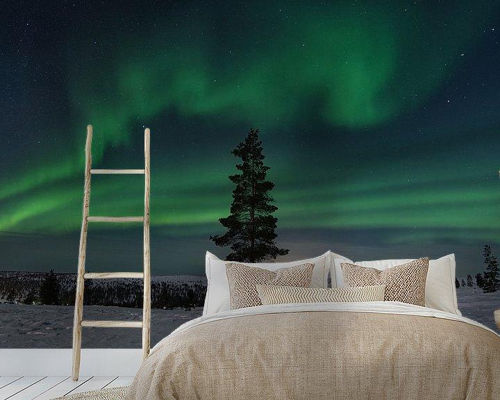 Beispiel fototapete: nordlicht in finnland lappland. mit einem baum im vordergrund. von Robin van Maanen