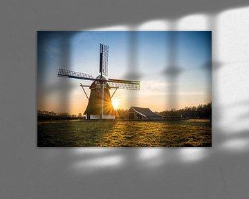 De Zwaluw (Oudemolen) van Johan Mooibroek