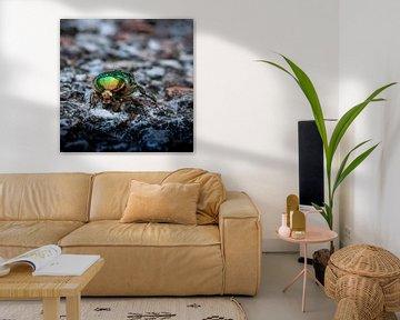 Goud of groen van Marjon Birza
