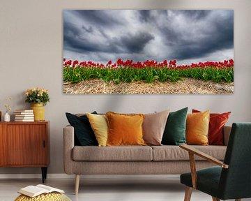 Rote Tulpen 2020 B von Alex Hiemstra