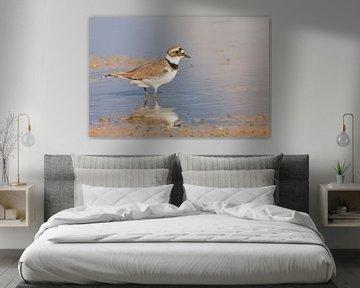 strandvogeltje van Kris Hermans