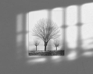 Winters Oogst 3 van Keith Wilson Photography