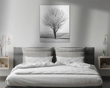 Winters Oogst 1 van Keith Wilson Photography